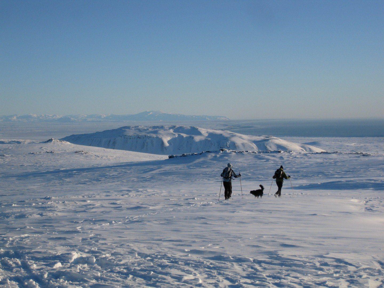 Ein Traumtag im Skigebiet von Bláfjöll Copyright: C.B.