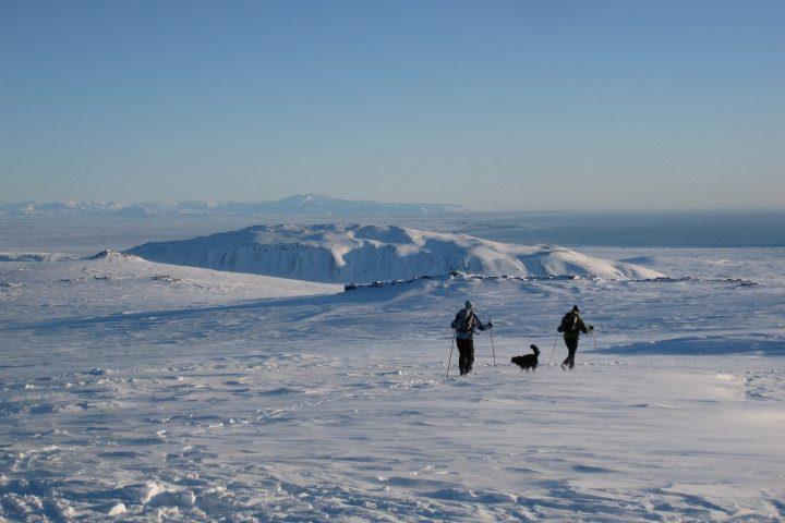 Skifahren in Island – ein neuer Trend im Wintertourismus
