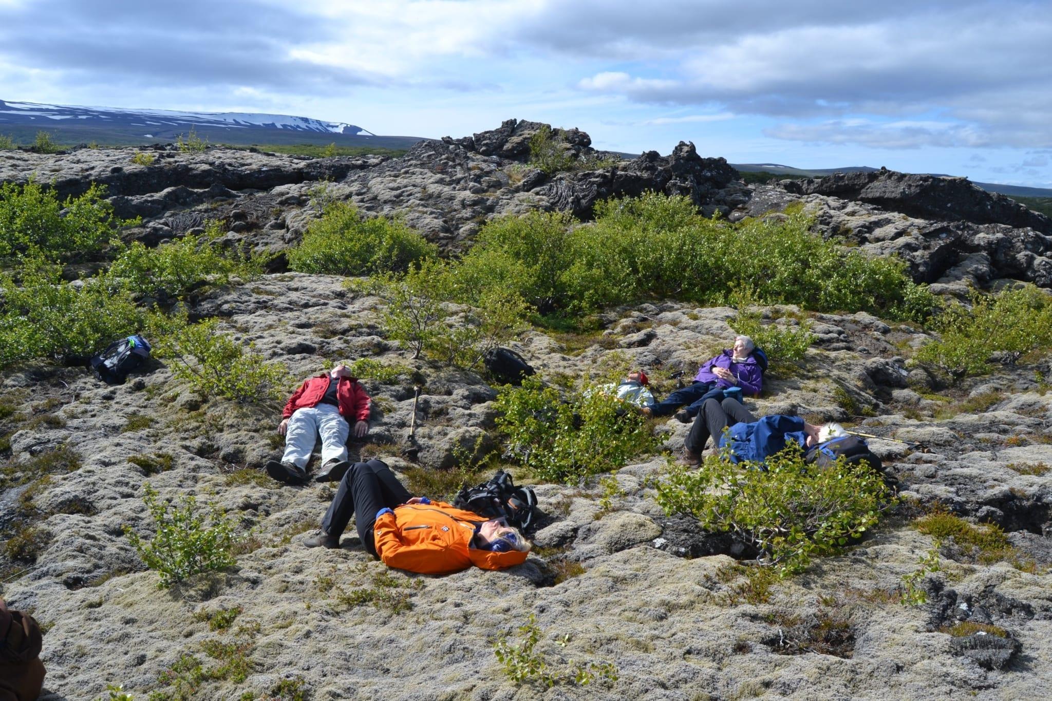 Gemütlich geht es in unseren Gruppenreisen zu. Foto: Hörður Erlingsson