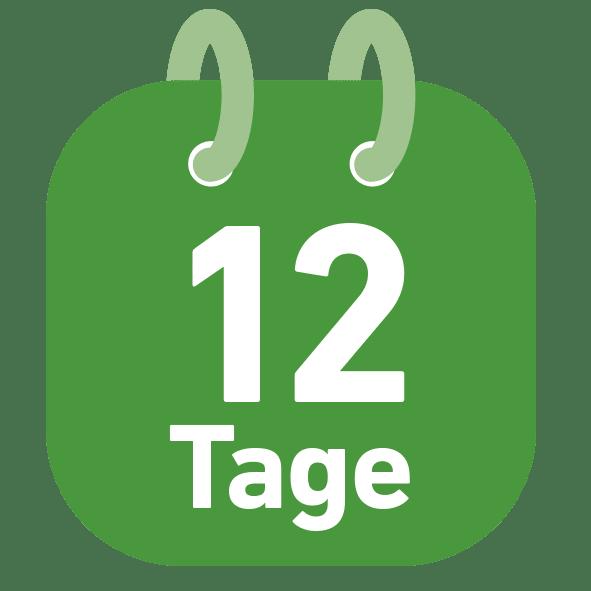 12 tägige Rundreise in Island